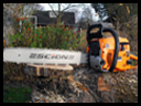 Firefighting - Chainsaw Safety