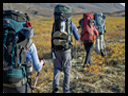 Recreation Courses - Wilderness training