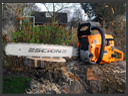 Equipment Safety - Chainsaw Safety